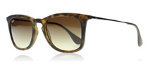 Ray-Ban 4221 Tortoise & Silber 865/13